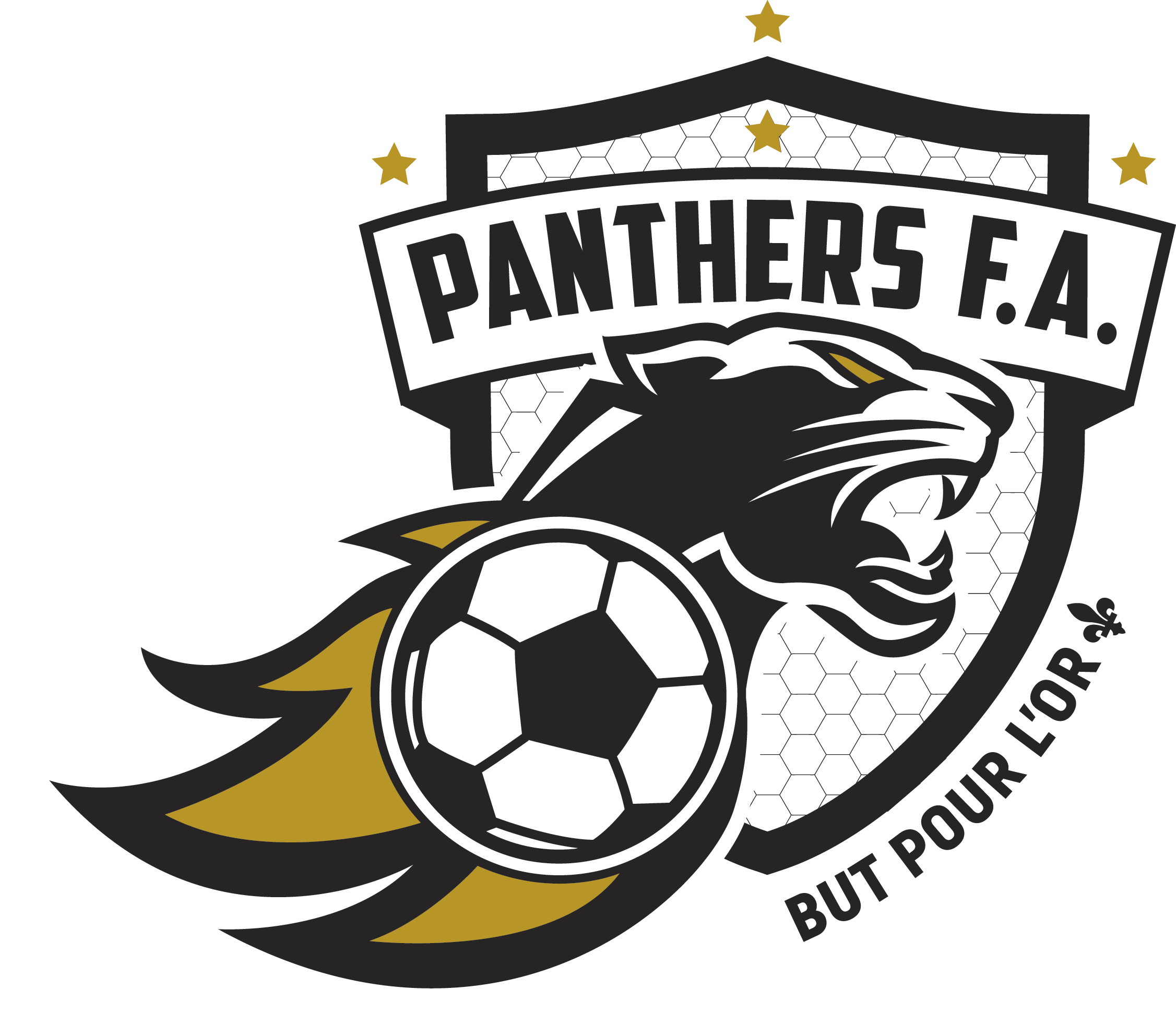 Panthers Football Academy